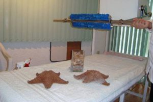 cama con rodillos automaticas